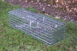 Professional double spring Grey Squirrel Cage Trap