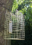 Tree Mountable Squirrel Trap with Bird Feeder