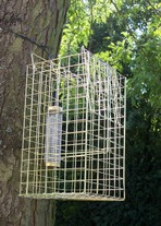 Elgeeco Squirrel Trap with Bird Feeder